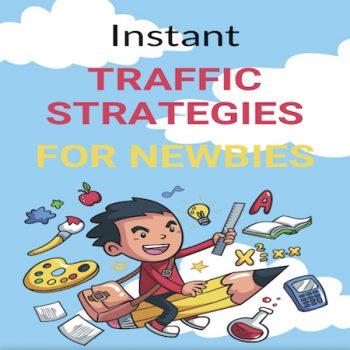 Instant Traffic Strategies For Newbies