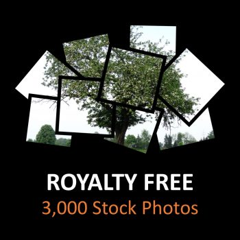Royalty Free 3,000 Stock Photos